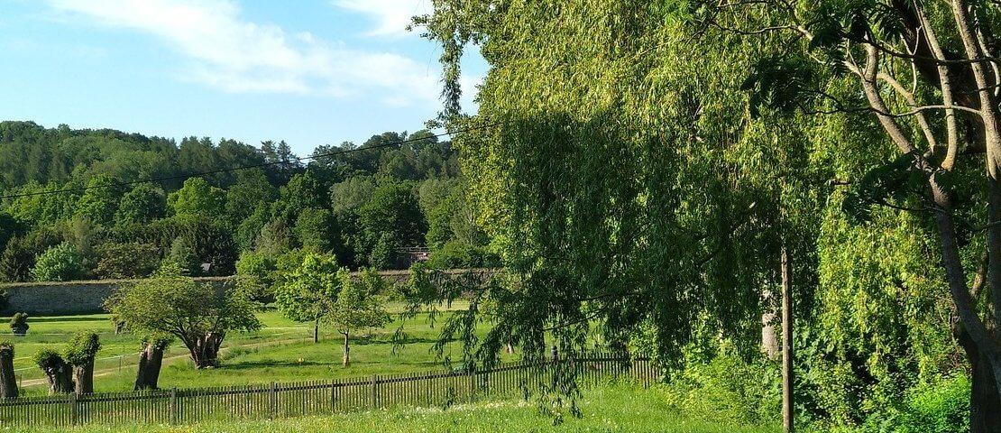 Blick in den Klosterpark Altzella Nossen